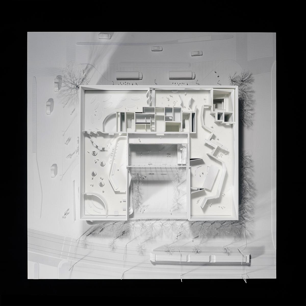 DHM-Model-5-(web).jpg