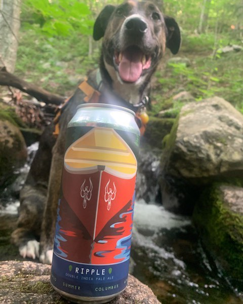Our friend Hudson in a cool stream with RIPPLE our new DIPA!