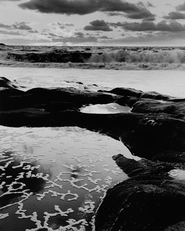 Gallery open 1-3pm today! Come check out this 16x20 #silvergelatinprint by @zacharycoleweston up now! $700, limited edition of 25.  Photo: Carmel River Beach tidepool ©Zach Weston. All Rights Reserved.  #galleryexposed #photographygallery #artgallery #carmel #carmelbythesea #carmelsquare #buyphotography #supportthearts #blackandwhite #bnwmagazine #bnw #bnwphoto #bnwphotography #bnw_captures #bnwmood #filmisnotdead #bwnude #fineartnudes #silvergelatinprint #silvergelatinprints
