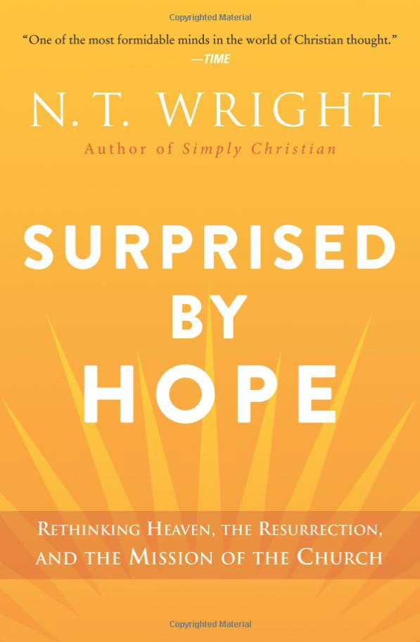 Surprised by Hope    by N.T. Wright    Buy on Amazon