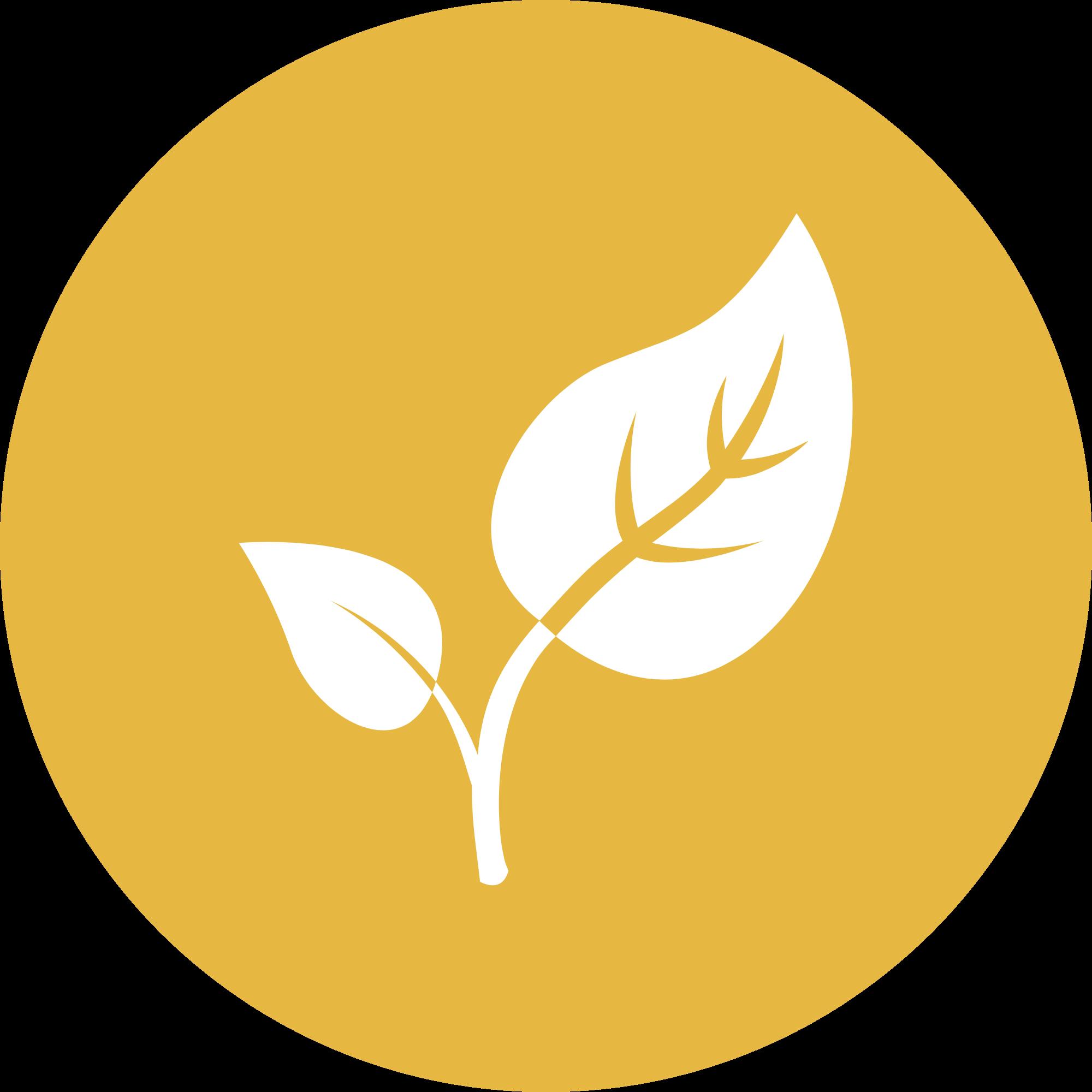 Zazen Environment Icon.png