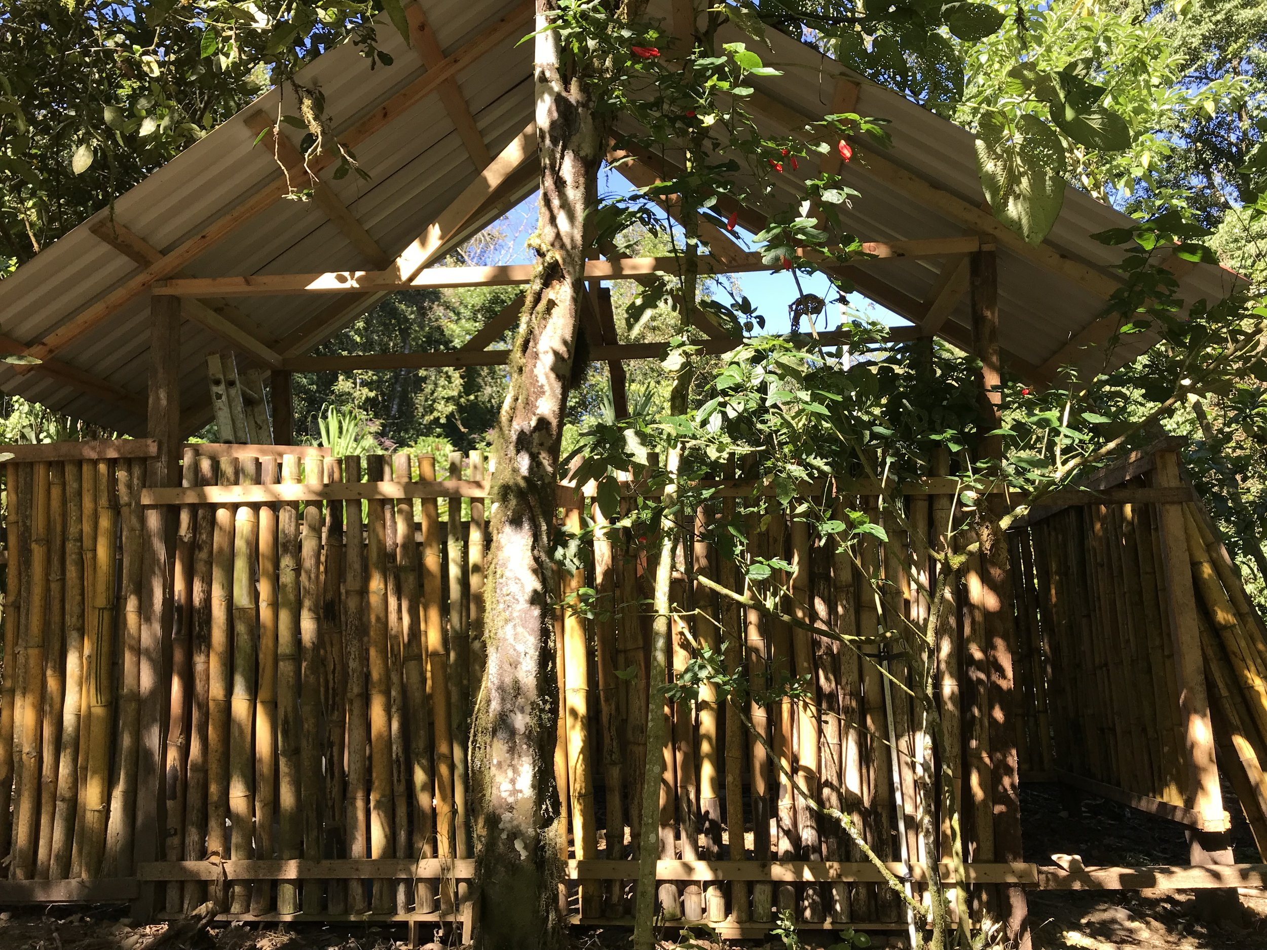 BAMBOO OUT HOUSE