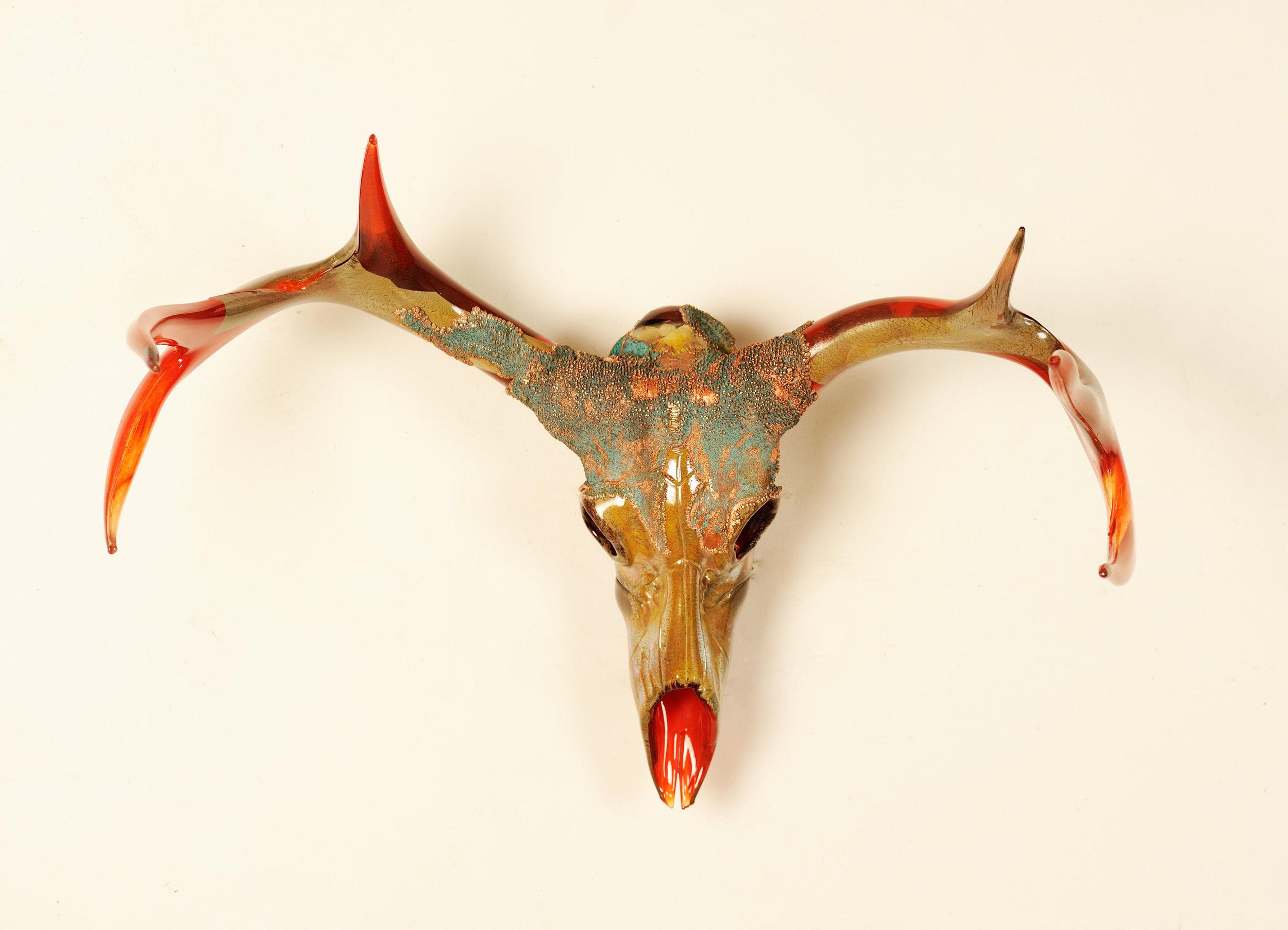 Red-Deer-Skull-3.jpg