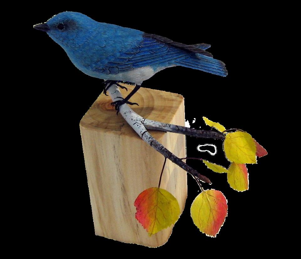 2019 Auction Item - Mountain Bluebird / Doug Rose