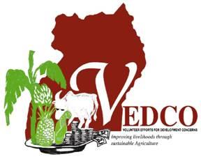 VEDCO.jpg