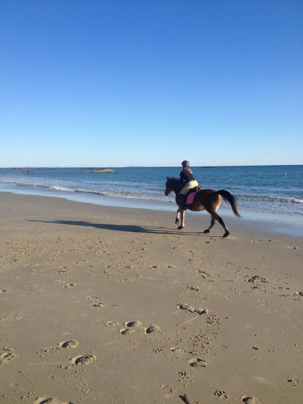 beach ride oct 2013 (4).jpg