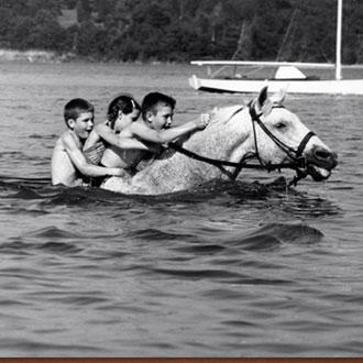 HORSE CAMP -