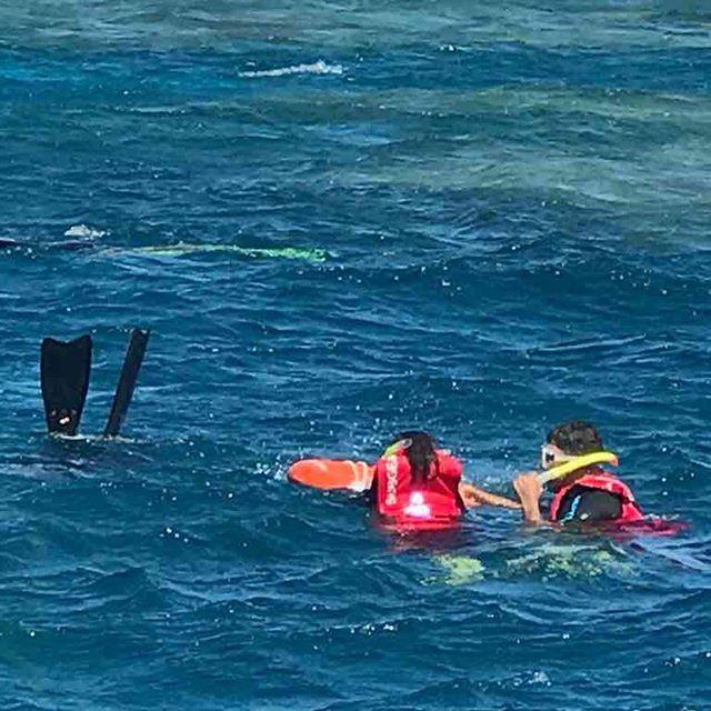 🐠🐢🐟🐳 Verika & I snorkeling in the Great Barrier Reef 🤣🐠🐟🐡🐢 #australia #iwontletgo #lifeline