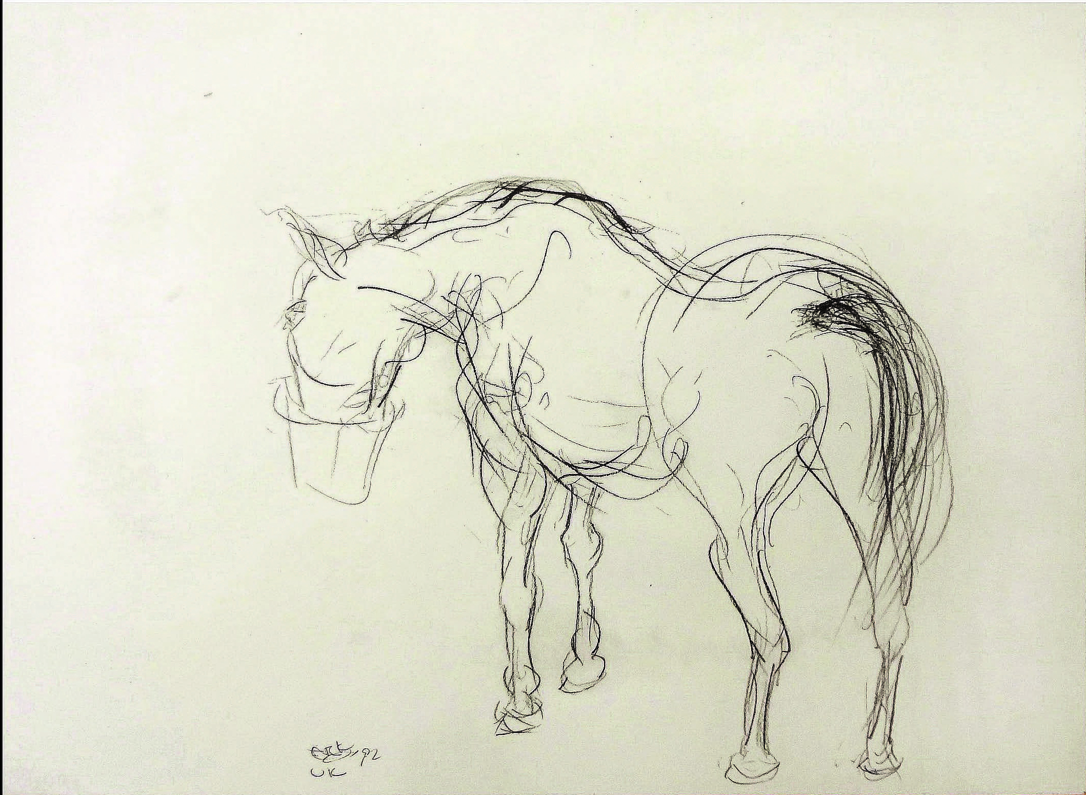 """Archie Eating"" Irish Hunter - England, 1994 , 1992  Pencil on paper  10 3/4 × 14 1/2 in   Inquire"