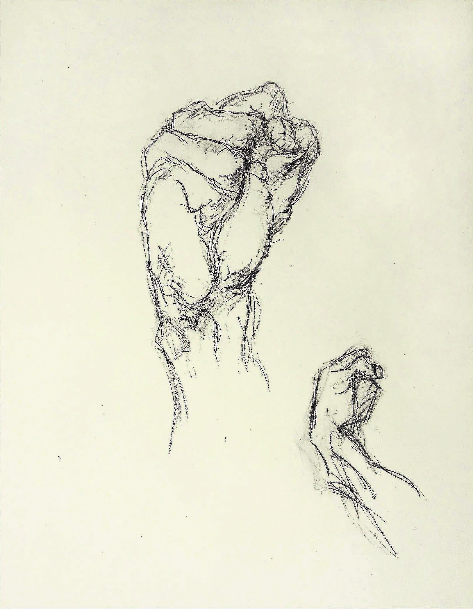 """The First & Wrist"" Textbook Class Exercise , N/A  Pencil on paper  15 × 11 1/2 in   Inquire"