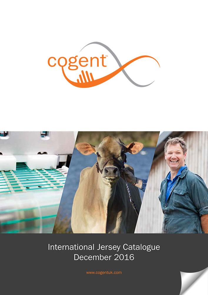 International Jersey Catalogue