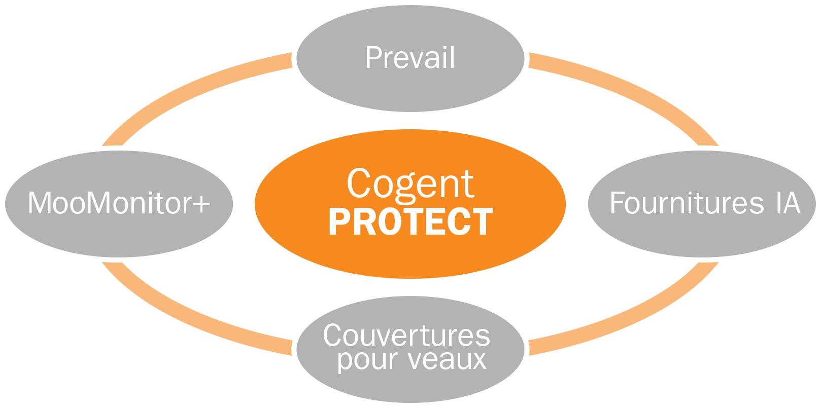 Precision Protect - Cogent Canada Diagram