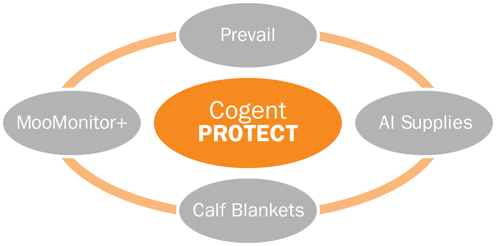 Precision Protect - Cogent Canada Diagram