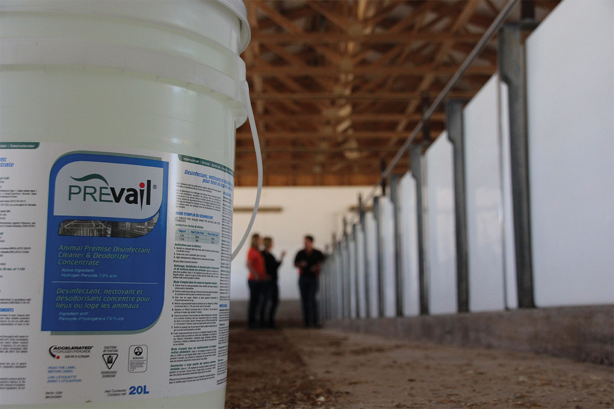 Cogent est fier d'être le distributeur exclusif du Prevail dans l'industrie laitière, un nettoyant et désinfectant à 99 %.   Voir nos programmes