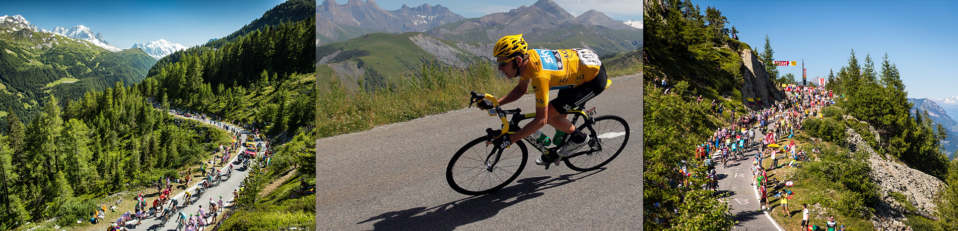 tdf-gallery.png