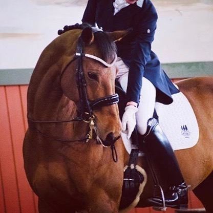 Mind.Body.Horse Online Yoga for Equestrians🐎Maintain flexibility through your lower back, supple your joints, and strengthen your core. ✨Start today with our 21 Day online yoga program designed specifically for the equestrian athlete. 📸 of MBH rider @jessicagreerdressage on her boy Harley