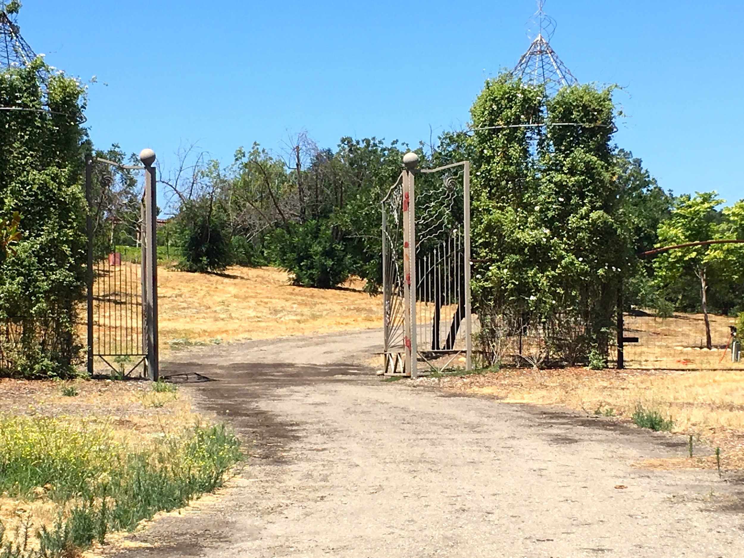 - Gates to the entrance of his property from Edward Scissorhand's movie.