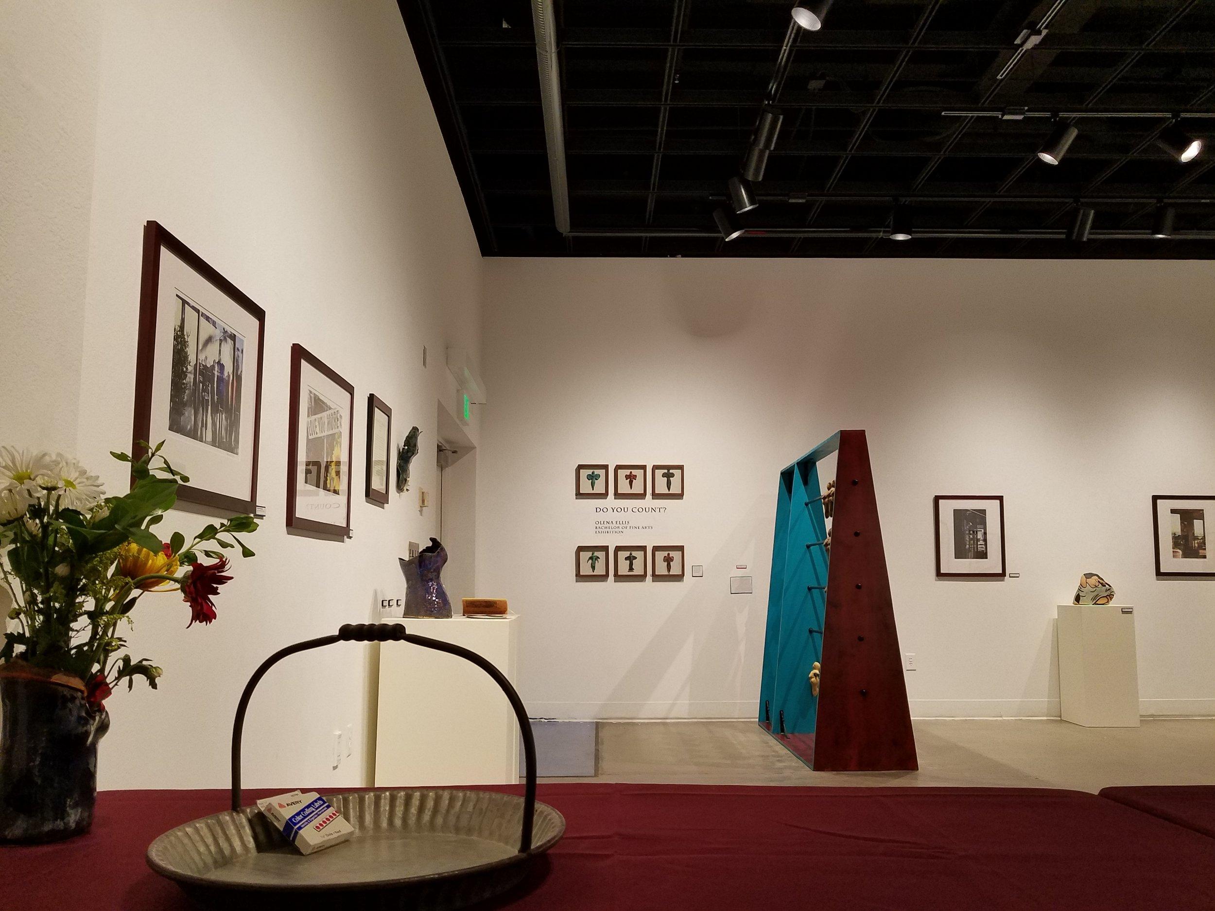 Olena A. Ellis,  Do You Count?  Exhibition, 2018