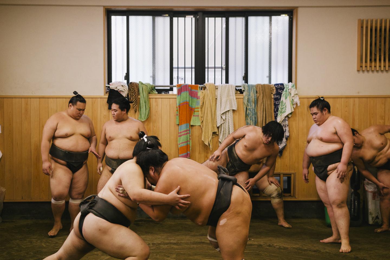 sumo_001.jpg
