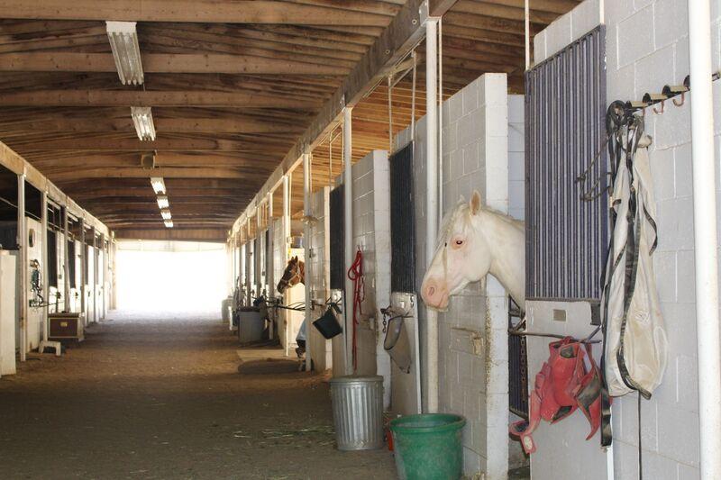 barn a and b.jpeg