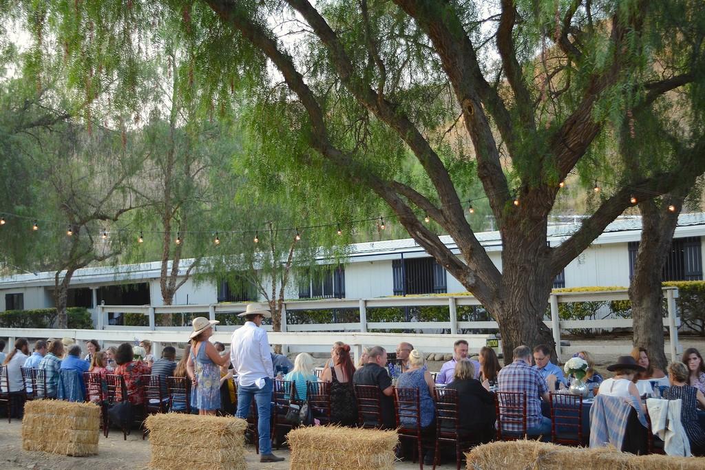 2018-07 Dinner Horse Ranch - 079.jpg