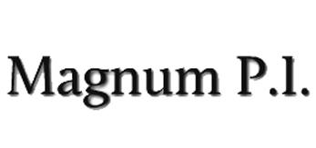 Magnum p i.jpg