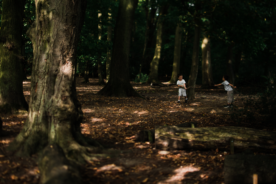 Diana Hagues Photography Freelensing summer adventures -  woodland shade.jpg