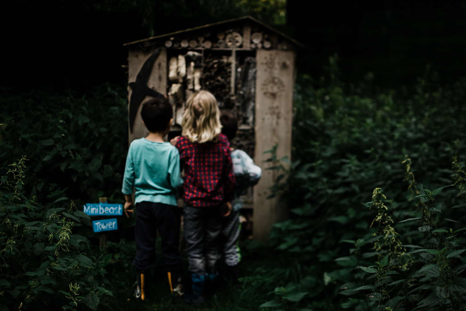 Freelensing - Free 52 project - Sept Oct 17 - Diana Hagues Photography-10.jpg