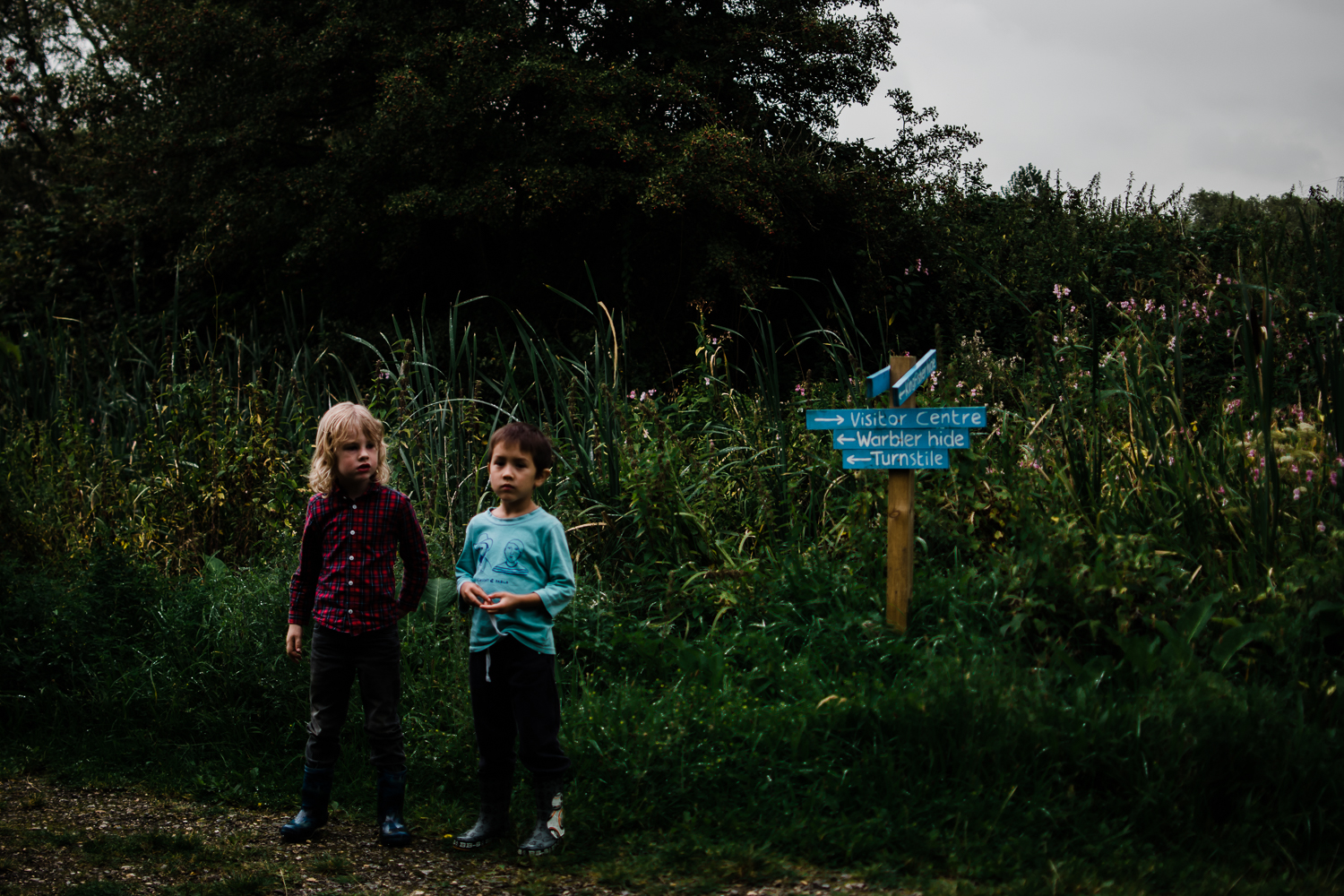 Freelensing - Free 52 project - Sept Oct 17 - Diana Hagues Photography-14.jpg