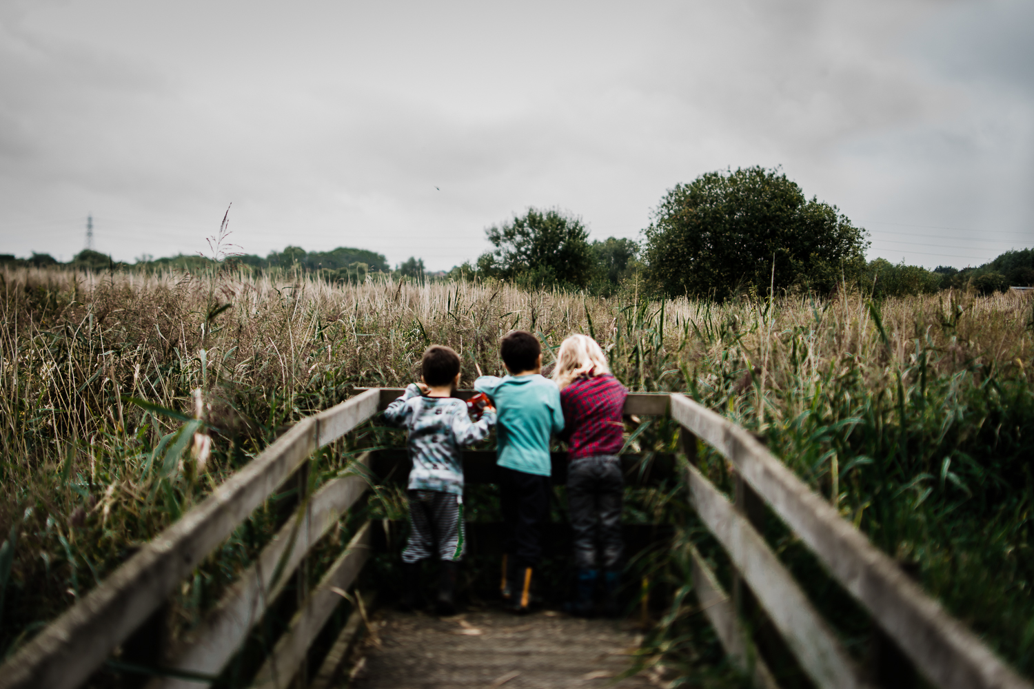 Freelensing - Free 52 project - Sept Oct 17 - Diana Hagues Photography-18.jpg