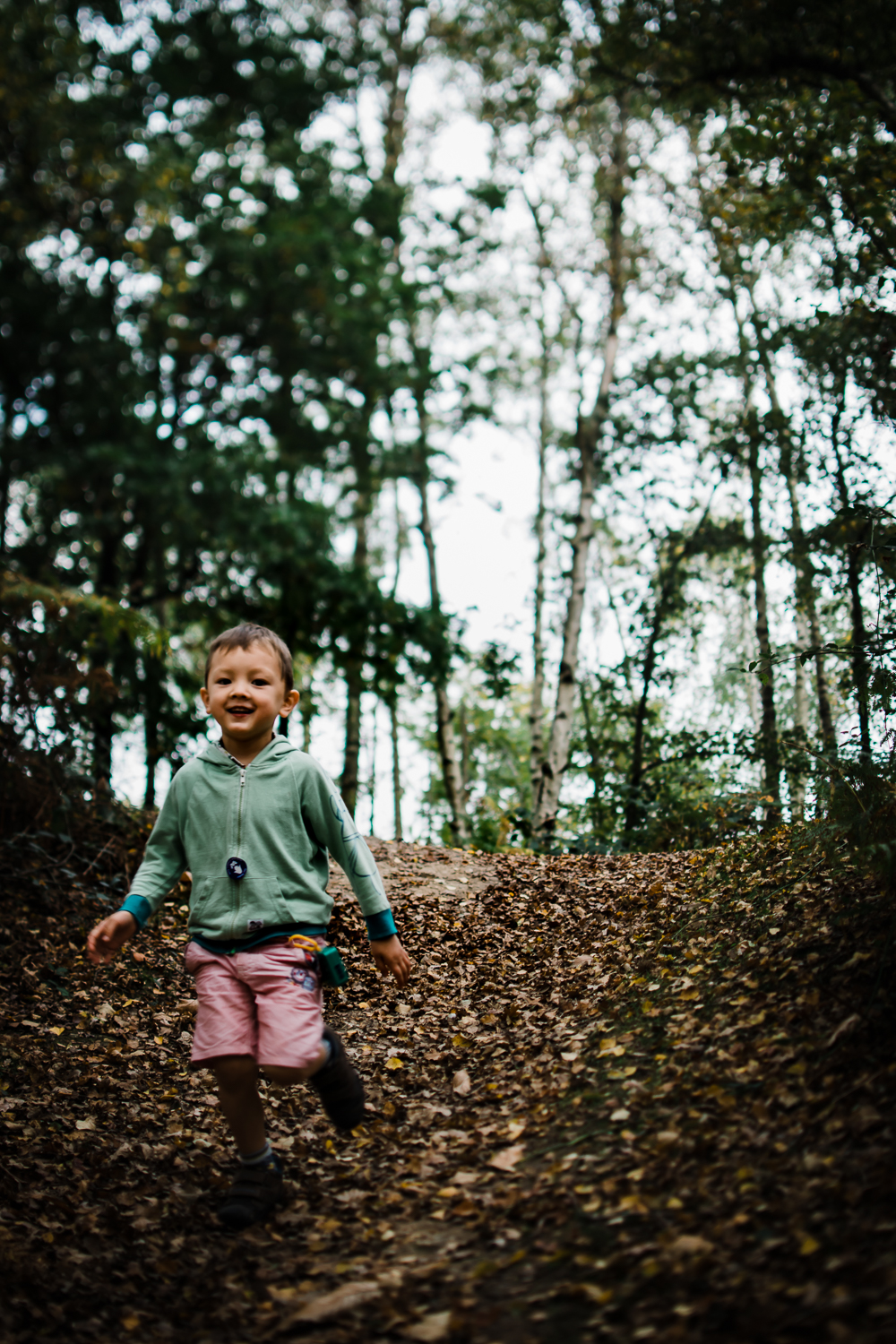 Freelensing - Free 52 project - Sept Oct 17 - Diana Hagues Photography-2.jpg