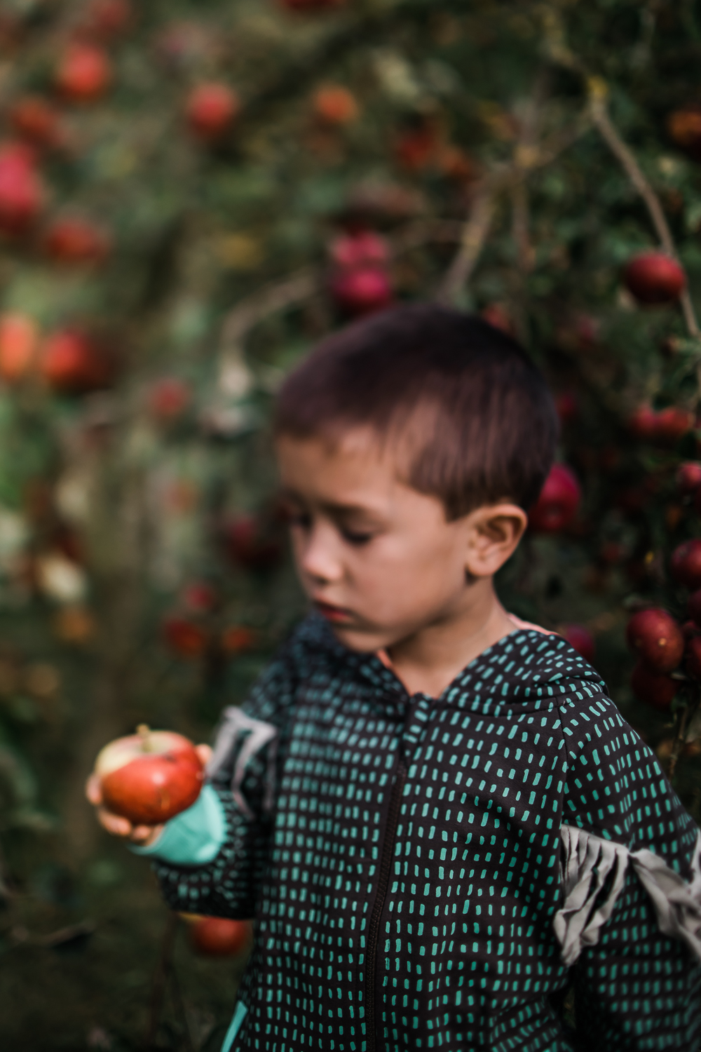 Freelensing - Free 52 project - Sept Oct 17 - Diana Hagues Photography-24.jpg