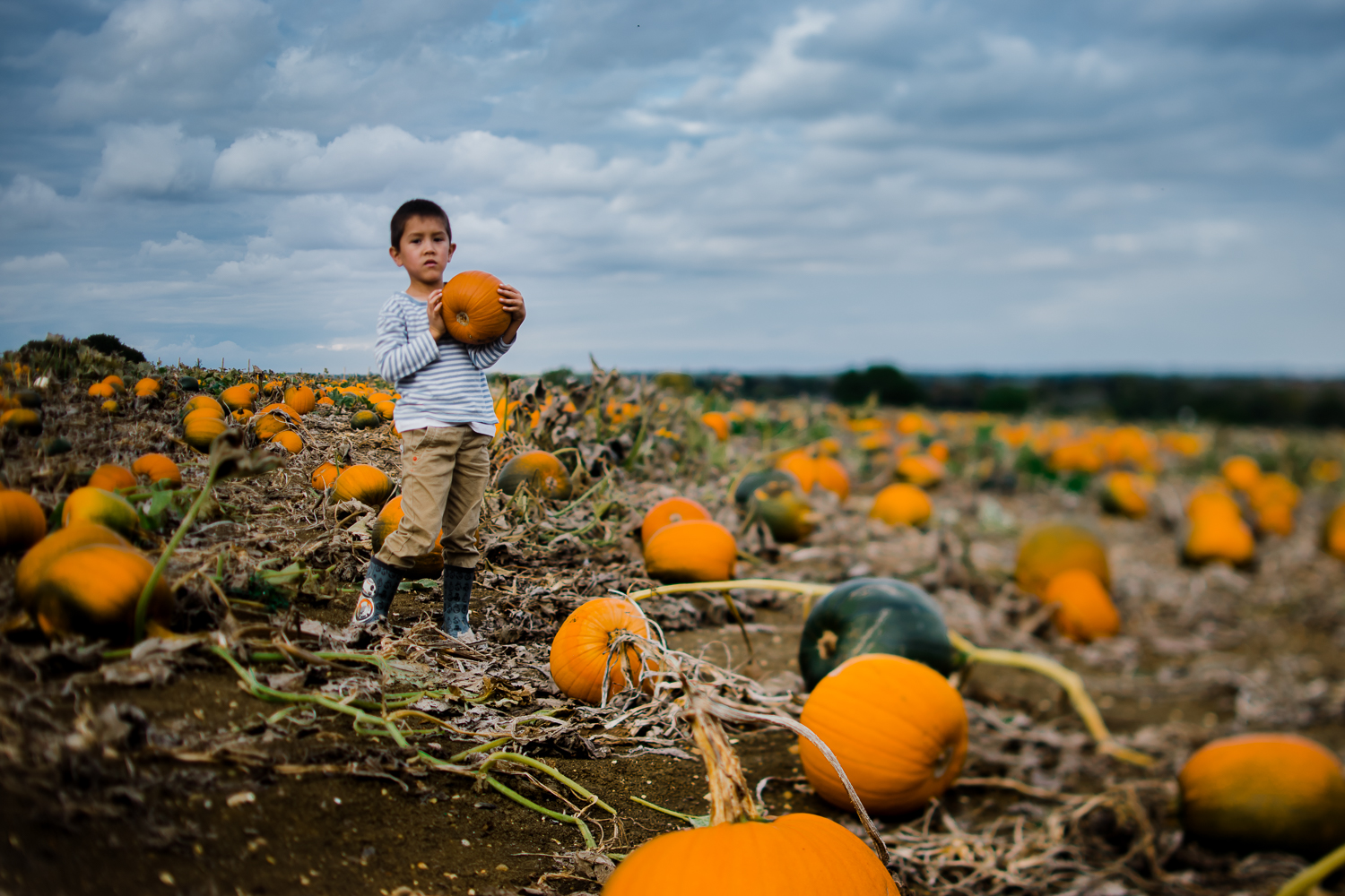 Freelensing - Free 52 project - Sept Oct 17 - Diana Hagues Photography-8.jpg