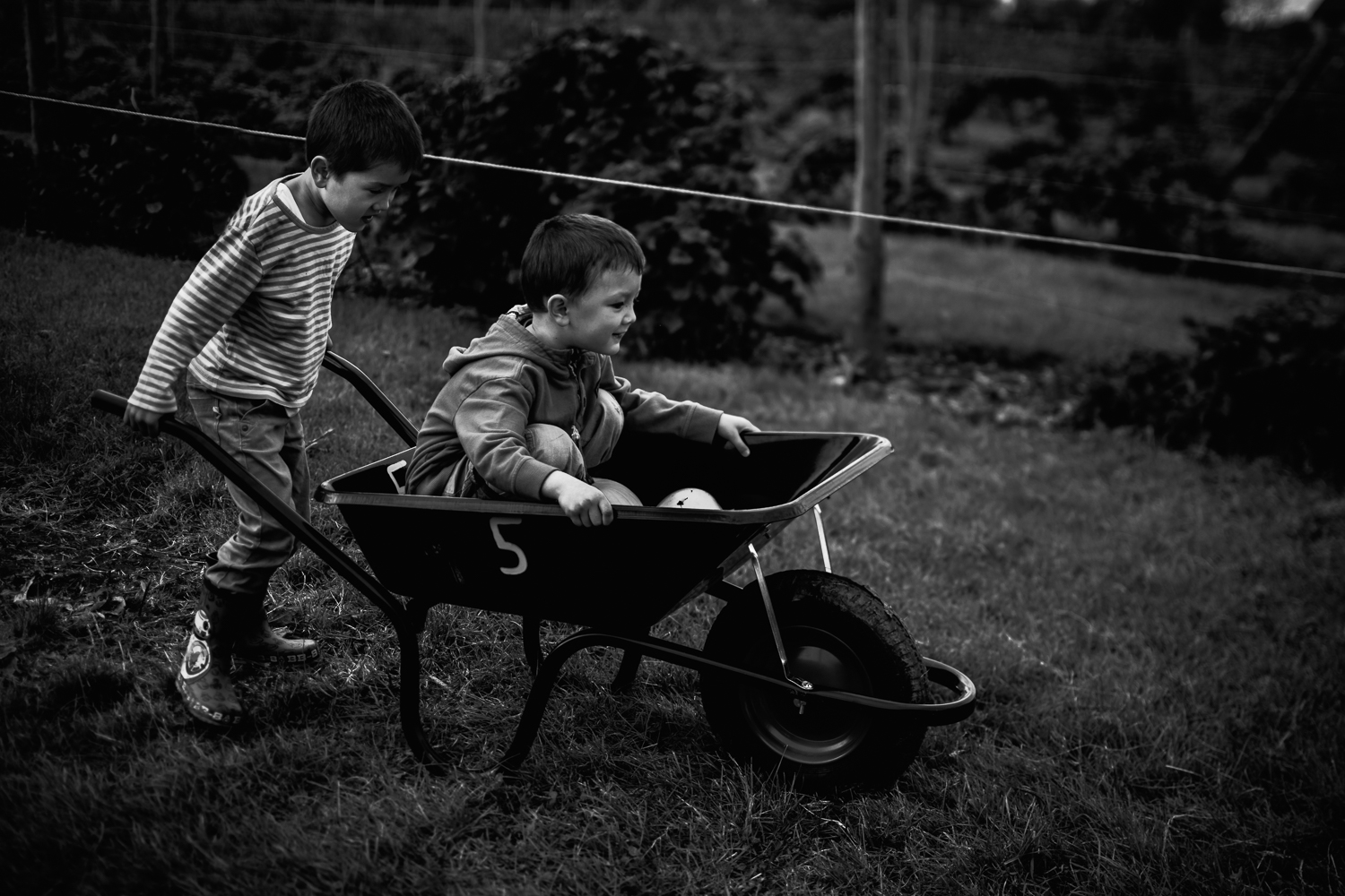 Freelensing - Free 52 project - Sept Oct 17 - Diana Hagues Photography-9.jpg