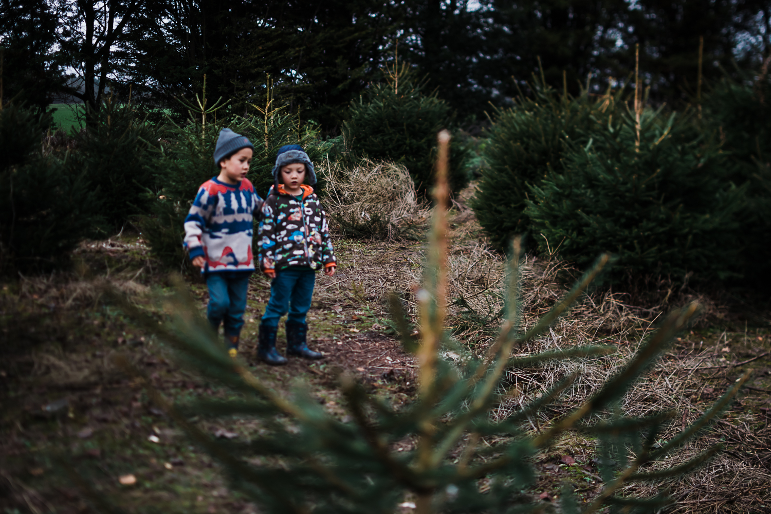 Family storytelling photography at Christmas - Documentary Photographer Diana Hagues
