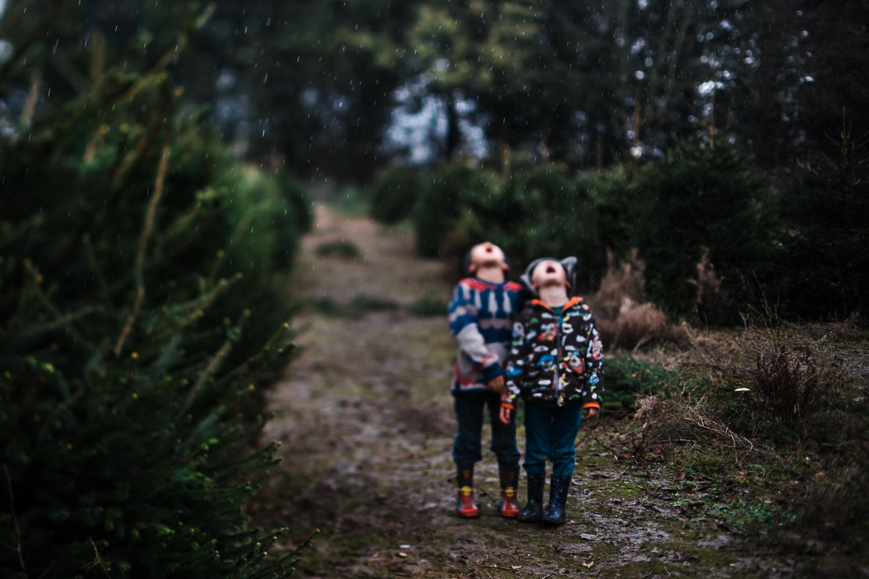 The raincatchers - Diana Hagues Photography