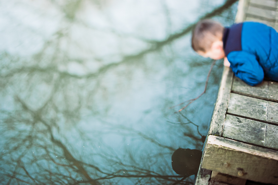 FreelensingLife-reflection.jpg