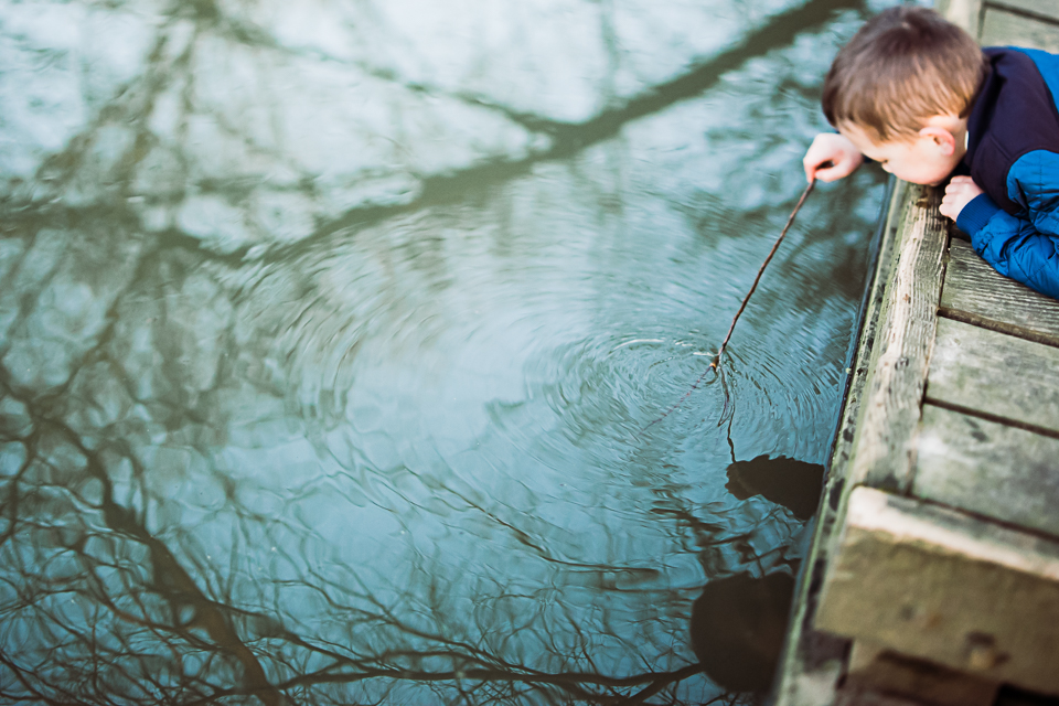 FreelensingLife-reflection-2.jpg