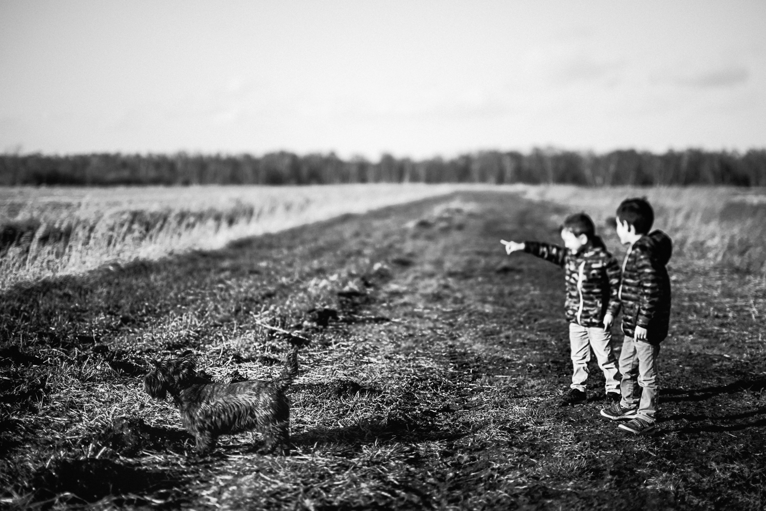 Two boys standing in open field looking towards Holme Fen