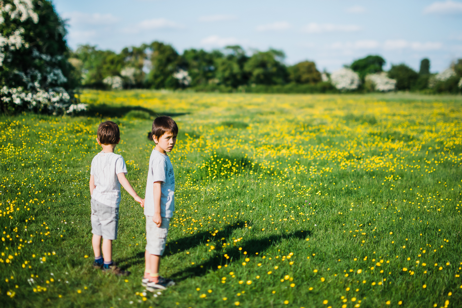 Children holding hands in a buttercup field