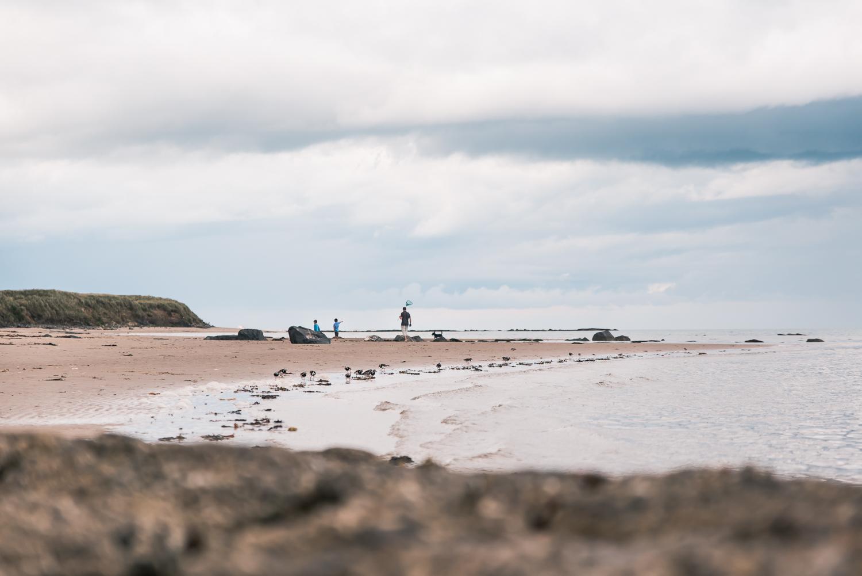People on Bamburgh beach on the Northumberland coast