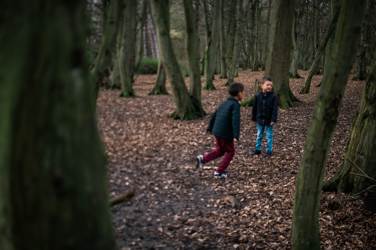 Two boys running around in Bob's Wood, Hinchingbrooke Park, Hunt