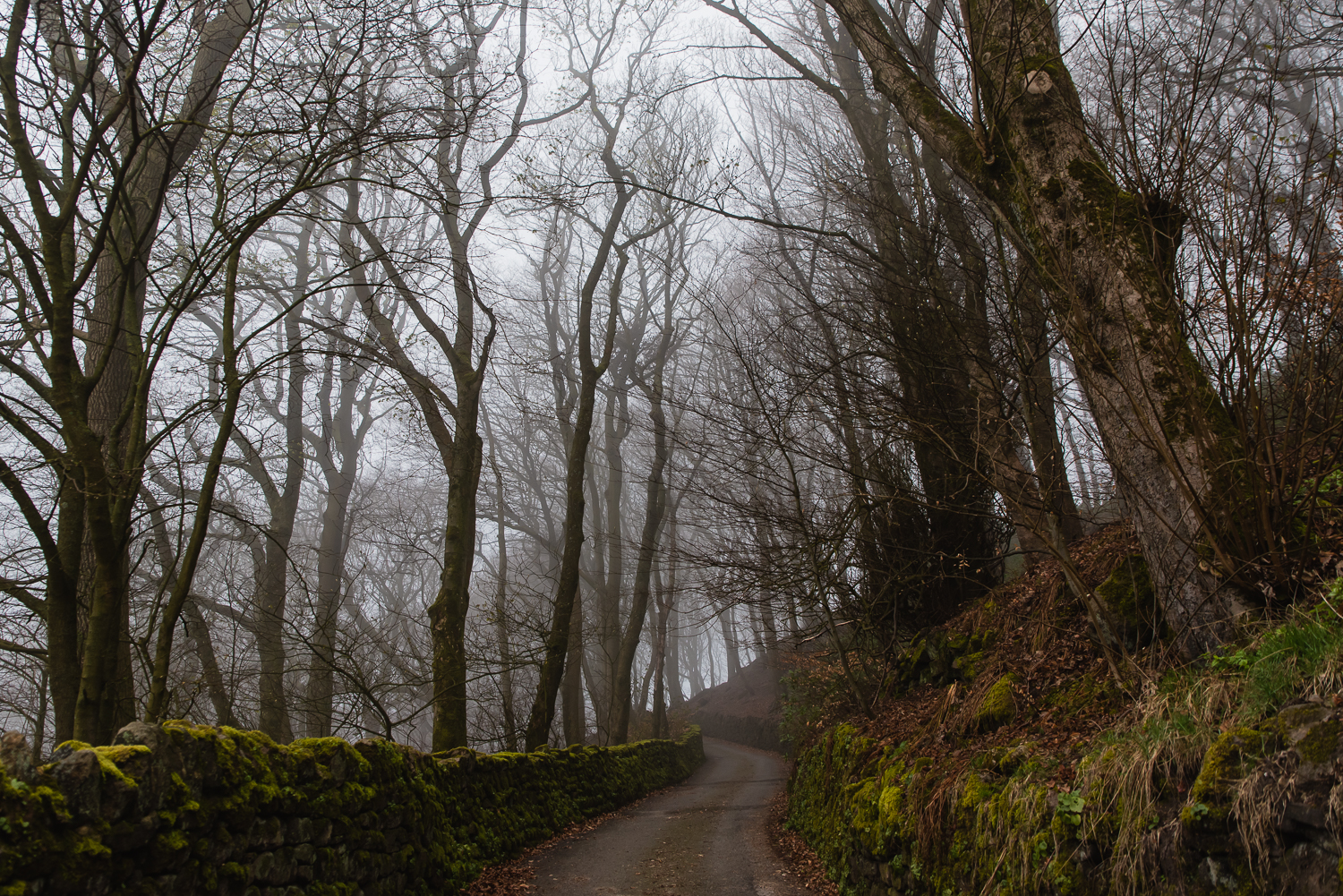 Road leading up Cragg Hall in West Yorkshire