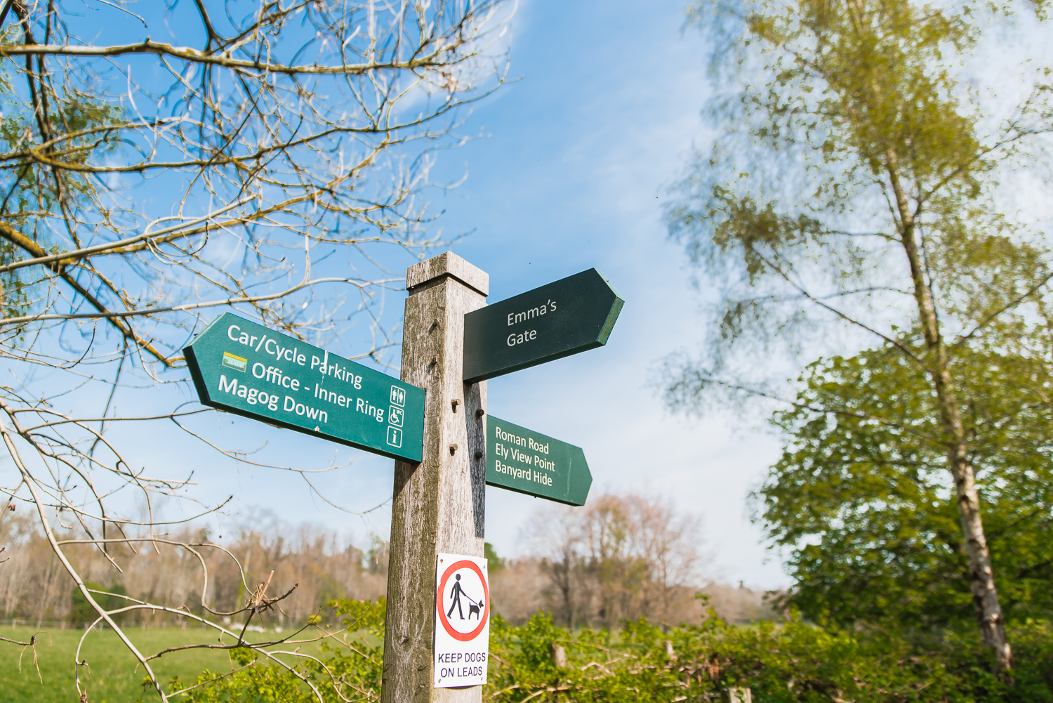 A signpost in Wandlebury Country Park