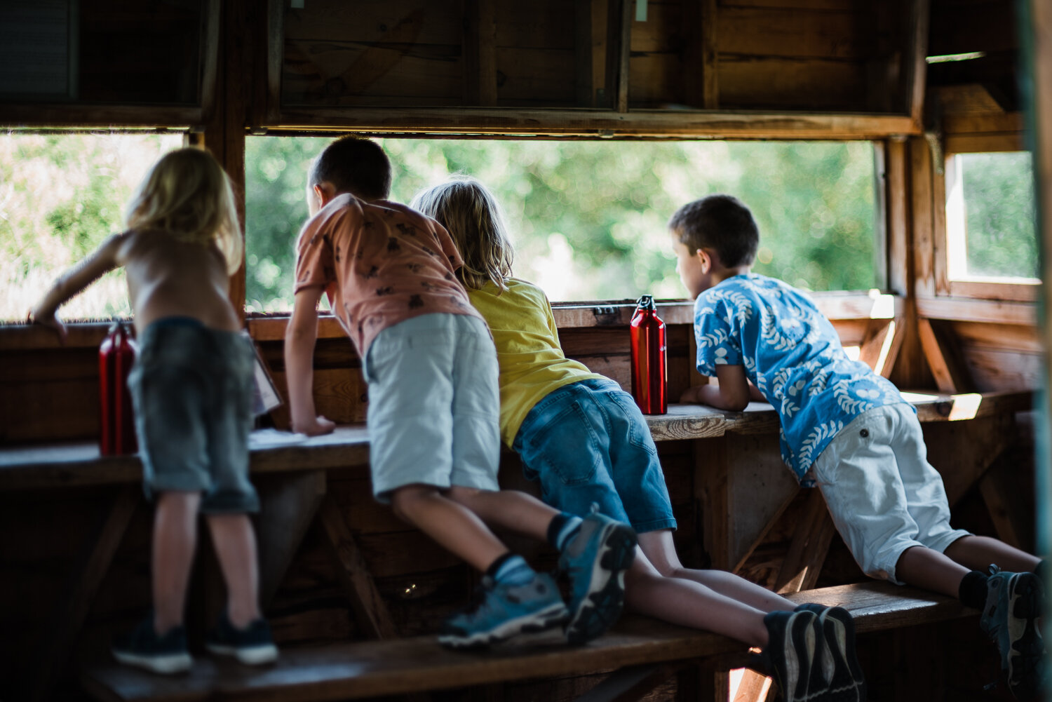 Young children exploring nature at RSPB Rye Meads, Hertfordshire family photographer Diana Hagues