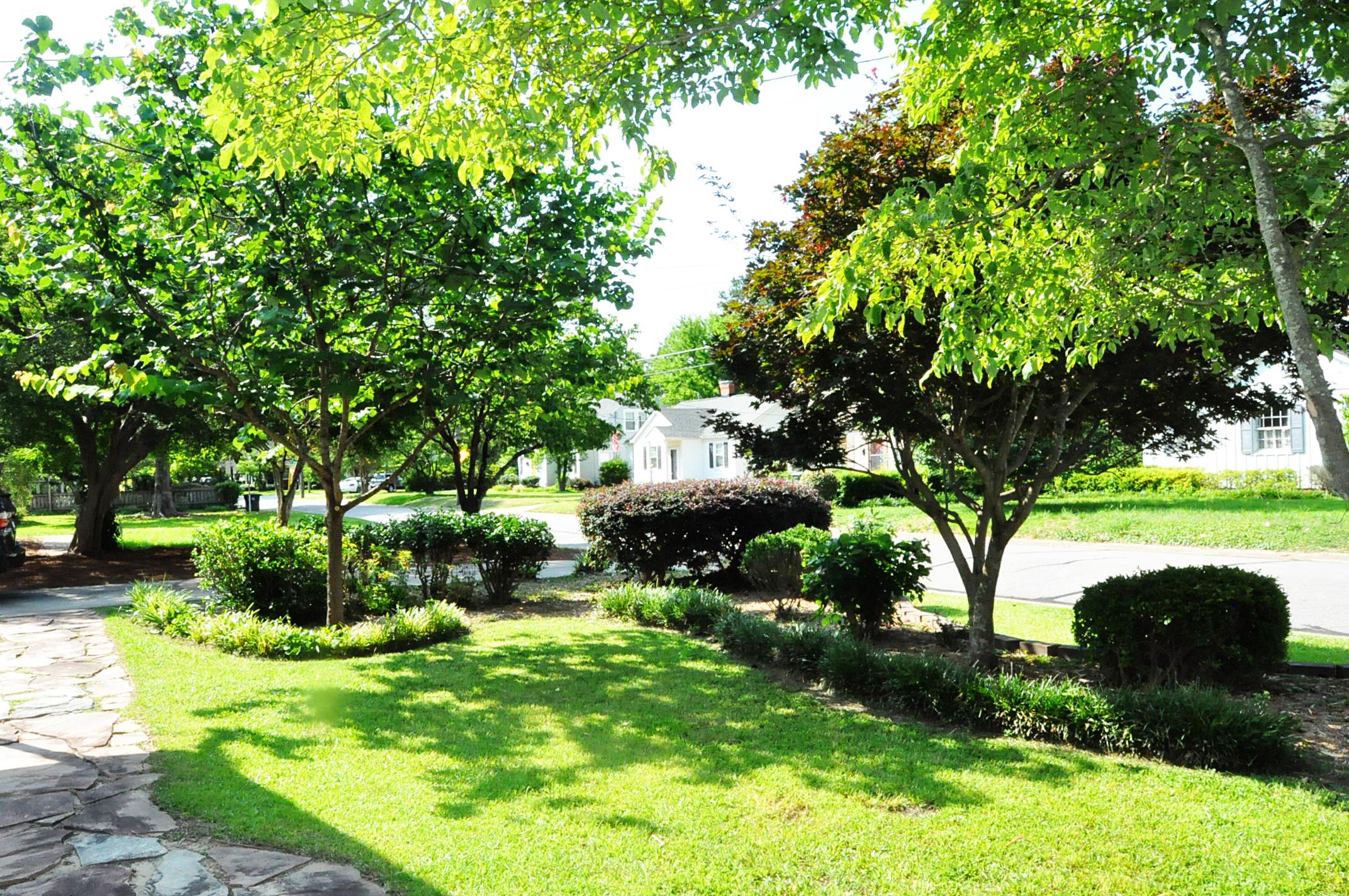 front yard 7.jpg