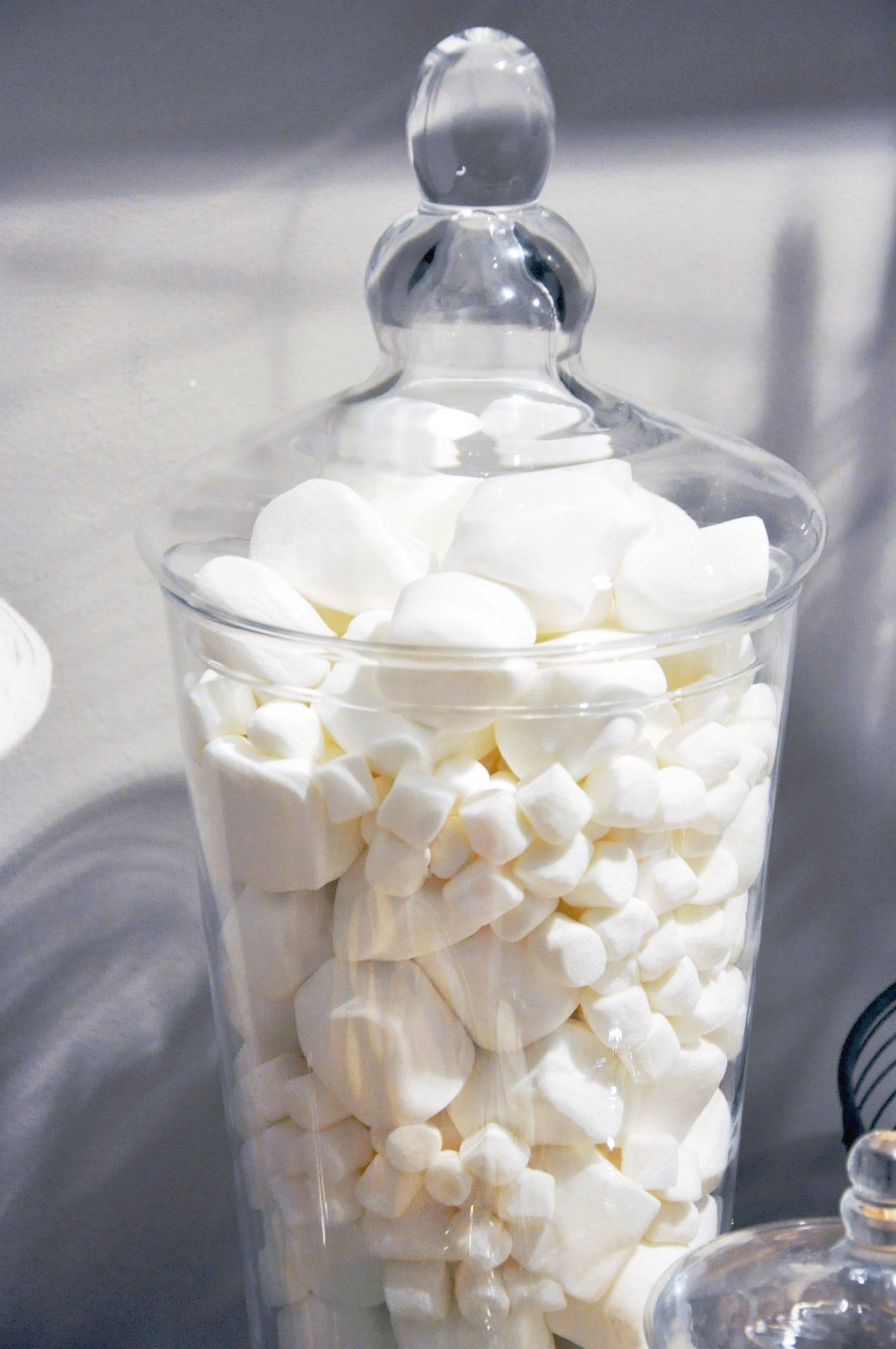 Haymount Homes Hot Cocoa Bar Marshmallows