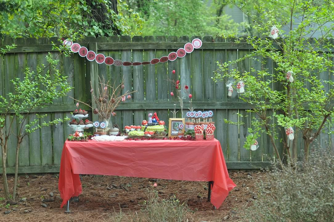 Haymount Homes Little Red Riding Hood Party Table Decor  4.jpg