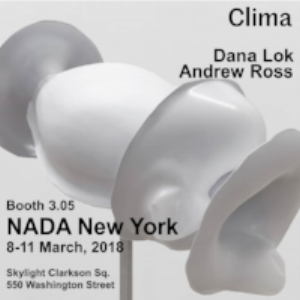 NADA New York with Clima Gallery  Two-person booth with artist Andrew Ross.  March 8–11, 2018