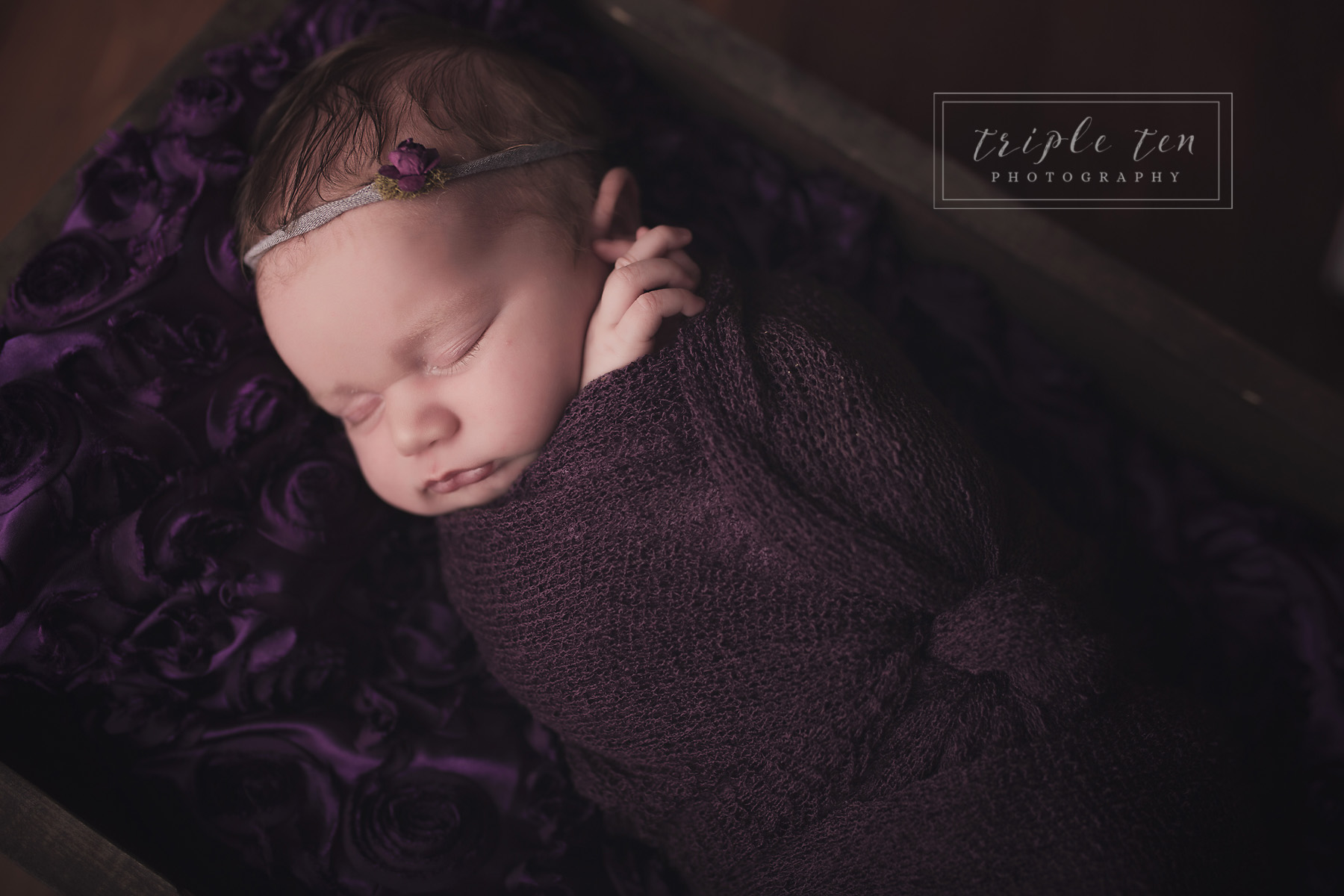 purple newborn photos red deer alberta.jpg